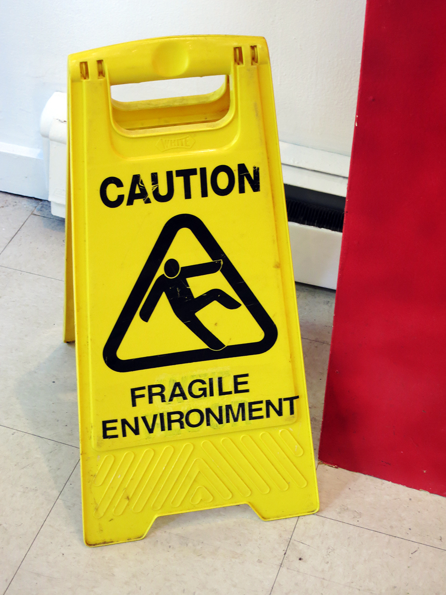 Caution: Fragile Environment